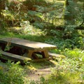 Picnic table along the trail. - Indigo Springs Campground