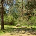 Typical site in Campers Flat Campground.- Campers Flat Campground