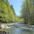 Campers Flat Campground sits along the Middle Fork of the Willamette River.- Campers Flat Campground