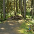 ADA-accessible site in Packard Creek Campground.- Packard Creek Campground