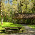 - Packard Creek Campground