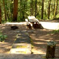 Stairs leading to a typical site in Packard Creek Campground.- Packard Creek Campground