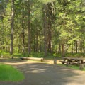 Campsite in Packard Creek Campground.- Packard Creek Campground