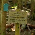 Trail sign for Vivian Lake Trail #3662.- Vivian Lake