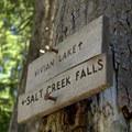 Signs for Vivian Lake and Salt Creek Falls. - Vivian Lake