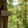 Sign for Vivian Lake in the Diamond Peak Wilderness. - Vivian Lake