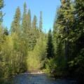 Salt Creek before the falls.- Vivian Lake