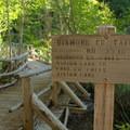 Trailhead from Salt Creek Falls parking area. - Vivian Lake