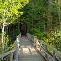 Wooden bridge at the start of the trail to Fall Creek Falls.- Fall Creek Falls