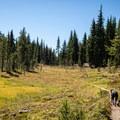 The trail to Rockpile Lake from Marie Lake.- Diamond Peak, Marie + Rockpile Lakes