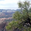 There are stellar views of the surrounding canyons for the entire length of the climb.- North Guardian Angel Climb