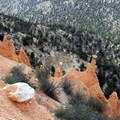 Erosion-resistant cap-rocks sit on top of their sandstone pedestals at the Hat Shop.- Under-the-Rim Trail to Hat Point
