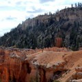 Caves, bridges, windows, hoodoos, and numerous other geological points of interest blanket the earth at Bryce Canyon.- Under-the-Rim Trail to Hat Point