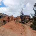 The dry, sandy trail weaves down to the Hat Shop.- Under-the-Rim Trail to Hat Point