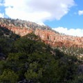 From the low point of the hike, you can look back up to the rim to see the many layers and folds of the canyon walls.- Under-the-Rim Trail to Hat Point