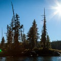 One of several small islands in Summit Lake that are ideal for backcountry camping.- Summit Lake