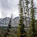 East Fork Wallowa River Trail.- Aneroid Lake