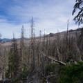 Looking east over the burn area.- Vista Ridge Trail Hike