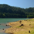 Low water levels expose stumps in Hills Creek Reservoir.- Packard Creek Day Use Area