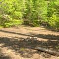 Backcountry campsite along the edge of Vivian Lake. - Vivian Lake