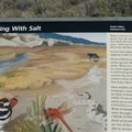 Interpretive sign along the boarwalk. - Salt Creek Interpretive Trail