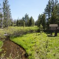 Three Creek flowing by the entrance of Three Creek Meadow Campground.- Three Creek Meadow Campground + Horse Camp