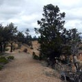 In some areas the trail is broad and sandy.- Fairyland Loop