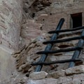 Re-created ladder shows how the dwellings were accessed.- Cliff Palace