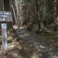 The westernmost end of the trail, near where the Fort to Sea Trail crosses Highway 101.- Kwis Kwis Trail