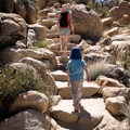 Sections of the Hidden Valley Trail have big stairs, but the trail remains very doable for children.- Hidden Valley Nature Trail