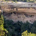 View of Cliff Palace from Sun Point View.- Chapin Mesa