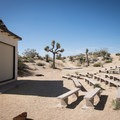 And amphitheater for ranger programs at Jumbo Rocks Campground.- Jumbo Rocks Campground