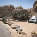 Several campsites are squeezed along the road or between rock piles.- Jumbo Rocks Campground
