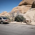 Typical site in Jumbo Rocks Campground.- Jumbo Rocks Campground