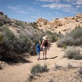 This nature trail is a great fit for families.- Skull Rock Nature Trail