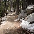 Round Valley Trail, Mount San Jacinto State Park.- Round Valley Loop