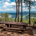 Animas Overlook trail has some nice places to picnic or relax.- Animas Overlook Trail