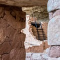 Long House is the second-largest of the Mesa Verde dwellings.- Long House