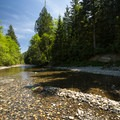 South Fork of the Snoqualmie River at Olallie State Park.- South Fork Snoqualmie River Picnic Area