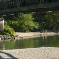 Sunbathers at the beach under the Highway 203 bridge.- Skykomish River, Al Borlin Park