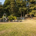 West playing field and day use picnic and playground area.- Carkeek Park