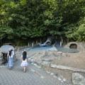 Iconic salmon slide and playground at Carkeek Park.- Carkeek Park