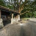 Picnic shelter #2 at Carkeek Park.- Carkeek Park