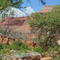 New Navajo Falls is about 1.5 miles from Supai.- Havasu Falls Hike via Havasupai Trail