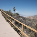 The path leading up to the view is steep but ADA accessible.- Keys View