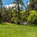 The forest setting of Junction Creek Campground is beautiful.- Junction Creek Campground