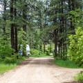 Campground roads are wide. - Junction Creek Campground