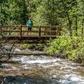 The Junction Creek Bridge- Junction Creek Trail, Colorado Trail