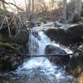 Small cascade while crossing Bowers Creek. - Thomes Gorge