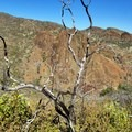 Looking down toward Thomes Gorge.- Thomes Gorge